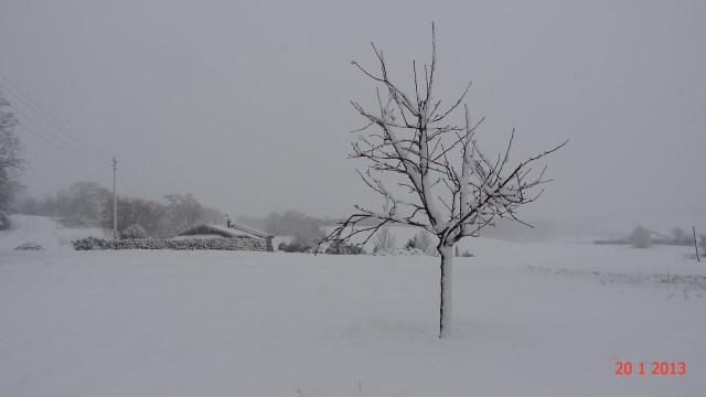 la neige est-elle arrivée chez vous ?  - Page 10 Small_DSC08181