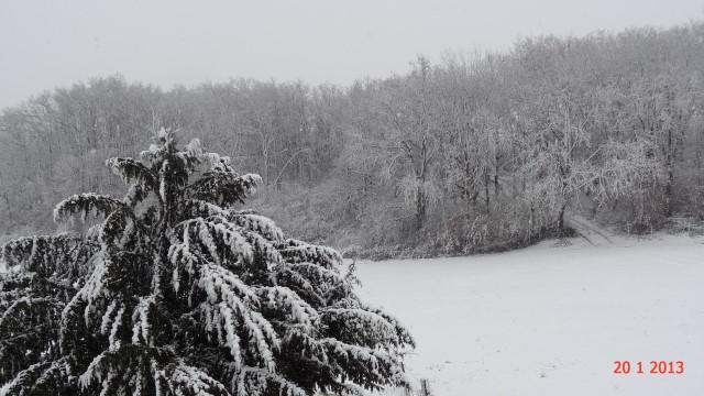 la neige est-elle arrivée chez vous ?  - Page 10 Small_DSC08191